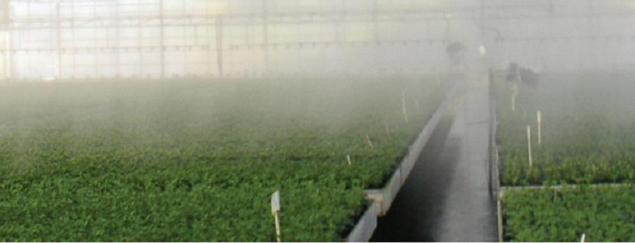 Applicazioni Nebulizzazione fogger irrigazione a nebbia Nebulizzatore acqua 5.5 l/h a croce diffusore fogger irrigazione Giardino Serre Fungaie Netafim CoolNet Pro