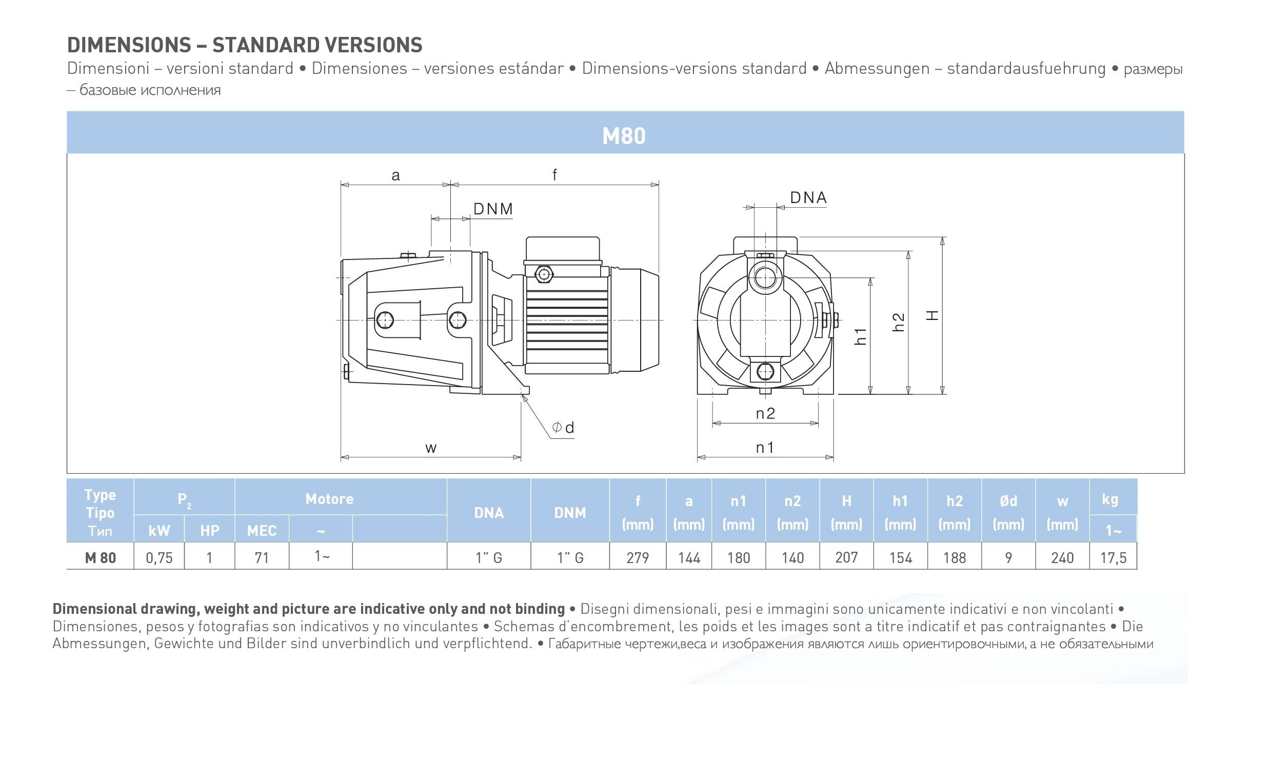 Dimensioni Elettropompa autoadescante Saer Jet M 80 1 hp 220V
