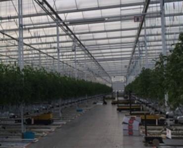 Irrigazione efficiente in agricoltura: il progetto Riga